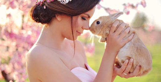 easter-arinab-photography-arina-b-photography-vintage-furniture-pink-gown-bunnies-bunny-rabit-pink-flowers-wedding-flowers-cake-61