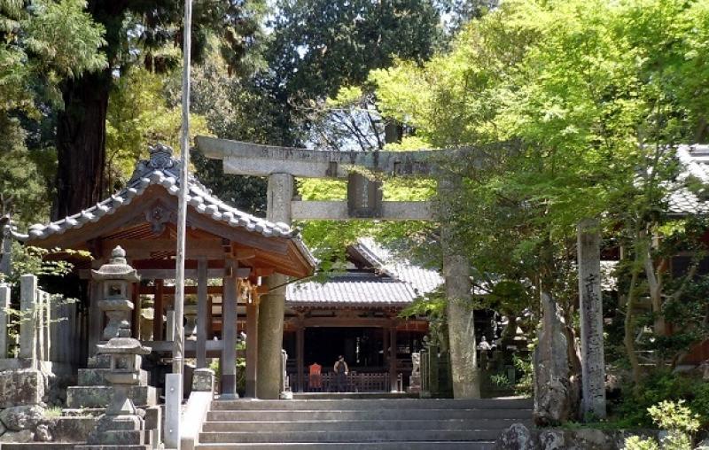 ヴェルージュが提案する神前挙式は『宇琉冨志禰神社』で厳かに執り行います。